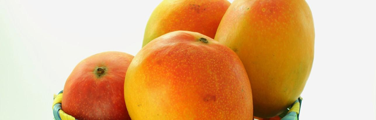 bio-fruechte-frutas-ecologicas