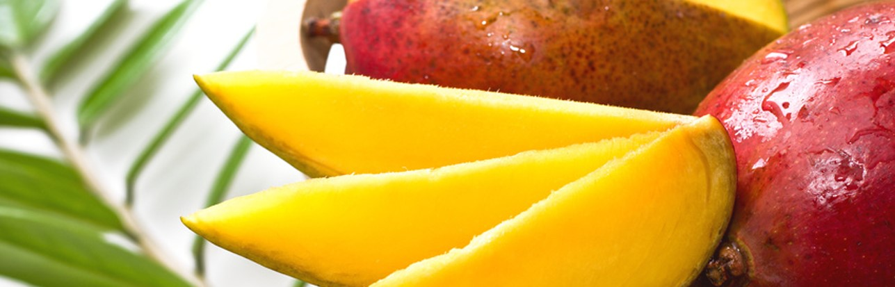 bio-mango-ecologico