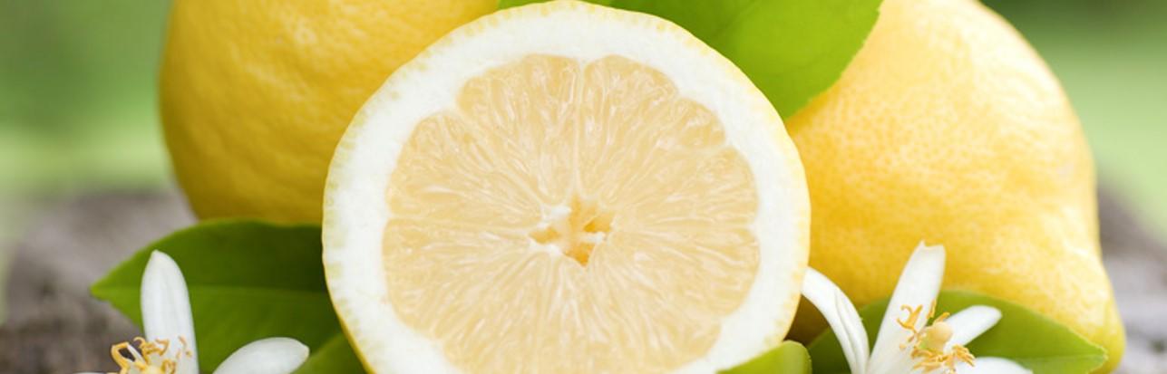 [:de]Bio-Zitronen[:es]Limones ecologicos